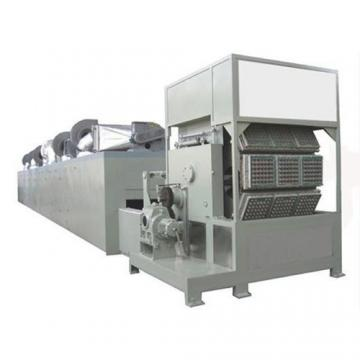 Ce Standard Full Automatic Corn Curls Extruder