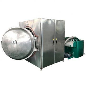 Professional Fish Feed Dog Pet Food Processing Line