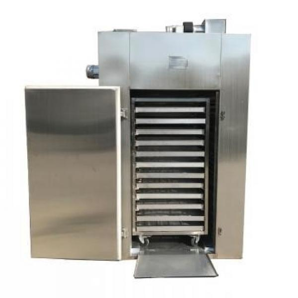 CT-C Hot Air Circulating Drying Oven Fish and Shrimp Dryer Machine #1 image