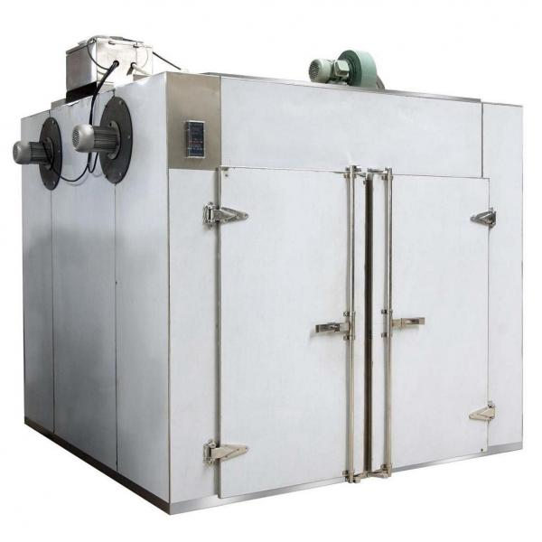 Small Fruit/Fish/Jujube Extract Powder Freeze Drying Machine #1 image