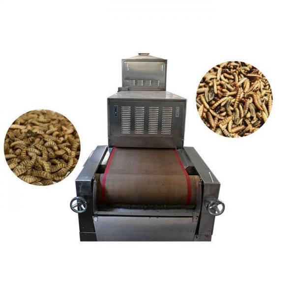 Complete Animal Feed Pellet Floating Fish Food Processing Line #1 image